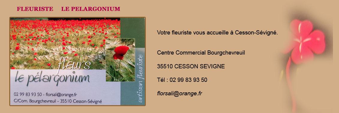 Fleuriste Le Pelargonium